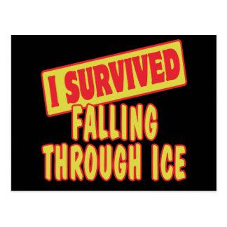 I SURVIVED FALLING THROUGH ICE POSTCARD