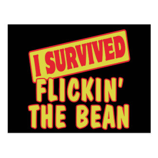 I SURVIVED FLICKING THE BEAN POSTCARD