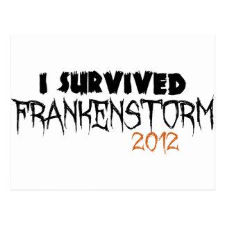 I Survived Frankenstorm 2012 Postcard