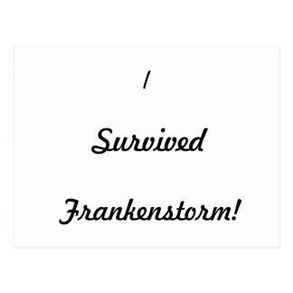I survived Frankenstorm! Postcard