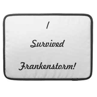 I survived Frankenstorm! Sleeves For MacBook Pro