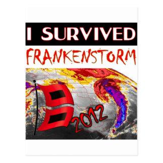 I SURVIVED FRANKENSTORM The storm of 2012 Postcard
