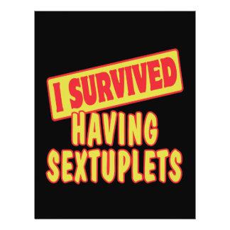 "I SURVIVED HAVING SEXTUPLETS 8.5"" X 11"" FLYER"