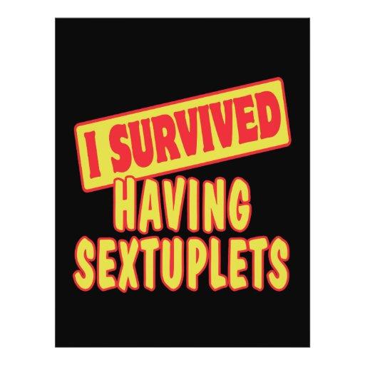 I SURVIVED HAVING SEXTUPLETS FULL COLOR FLYER