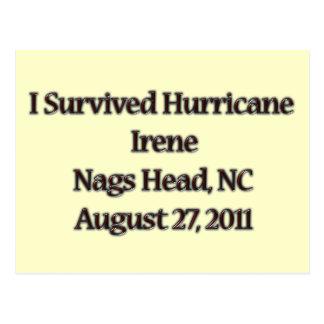 I Survived Hurricane Irene NC Postcard