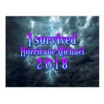 I survived Hurricane Michael Postcard