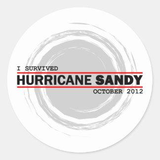 I Survived Hurricane Sandy Classic Round Sticker