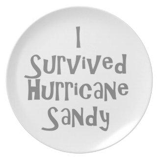 I survived Hurricane Sandy Gray.png Dinner Plates