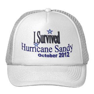 I Survived Hurricane Sandy Hat
