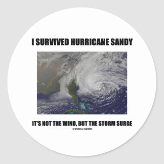 I Survived Hurricane Sandy It's Not The Wind But Classic Round Sticker
