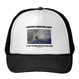 I Survived Hurricane Sandy It's Not The Wind But Trucker Hat