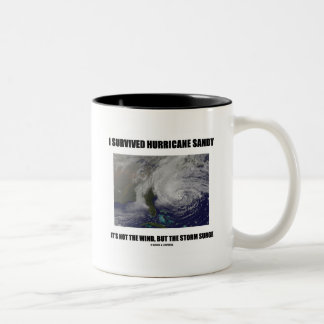 I Survived Hurricane Sandy It's Not The Wind But Two-Tone Coffee Mug