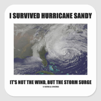 I Survived Hurricane Sandy It's Not The Wind But Square Sticker
