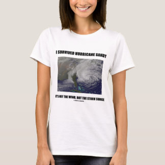 I Survived Hurricane Sandy It's Not The Wind But T-Shirt