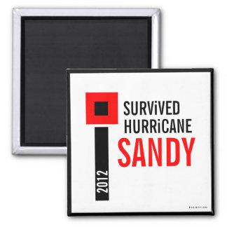 I Survived Hurricane Sandy Magnet 3