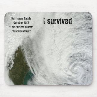 """""""I Survived Hurricane Sandy"""" Mousepad"""