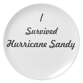 I survived Hurricane Sandy! Plates