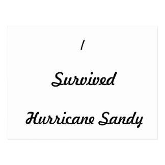 I survived Hurricane Sandy! Postcard