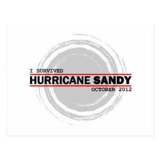 I Survived Hurricane Sandy Postcard