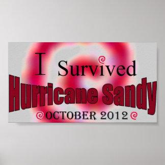 I Survived Hurricane Sandy Poster