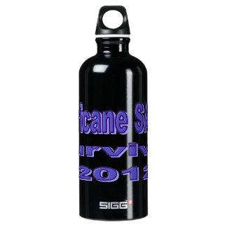 I Survived Hurricane Sandy SIGG Traveler 0.6L Water Bottle