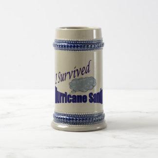 I Survived Hurricane Sandy Stein Coffee Mugs