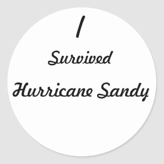 I survived Hurricane Sandy! Stickers