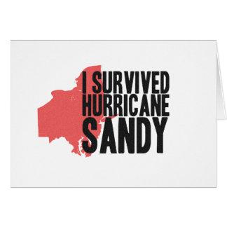 I Survived Hurricane Sandy  T-Shirt Card