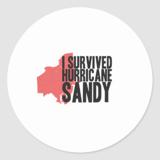 I Survived Hurricane Sandy  T-Shirt Classic Round Sticker