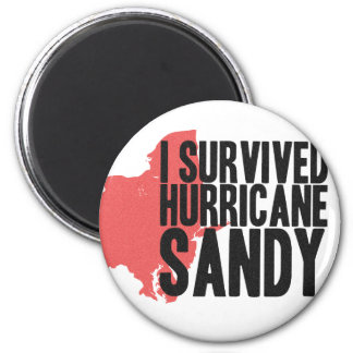 I Survived Hurricane Sandy  T-Shirt Magnet