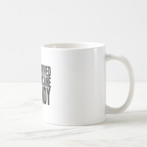 I Survived Hurricane Sandy  T-Shirt Classic White Coffee Mug