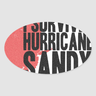 I Survived Hurricane Sandy  T-Shirt Oval Sticker