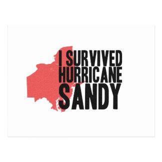 I Survived Hurricane Sandy  T-Shirt Postcard