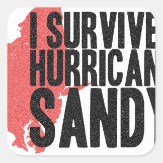I Survived Hurricane Sandy  T-Shirt Square Sticker