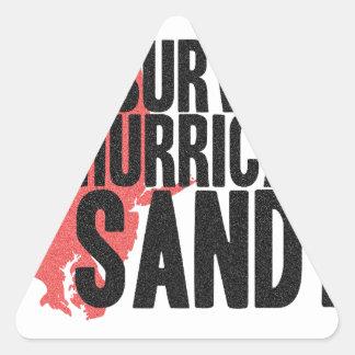 I Survived Hurricane Sandy  T-Shirt Triangle Sticker