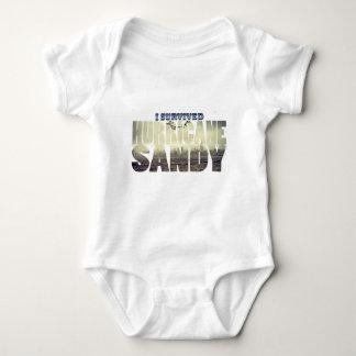 I Survived Hurricane Sandy T Shirts