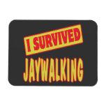 I SURVIVED JAYWALKING MAGNETS