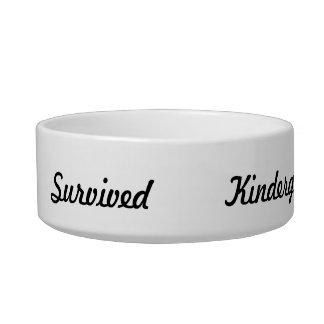 I survived Kindergarden! Bowl