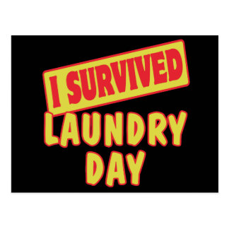 I SURVIVED LAUNDRY DAY POSTCARD