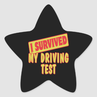 I SURVIVED MY DRIVING TEST STICKERS