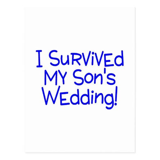 I Survived My Sons Wedding (Blue) Postcards