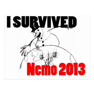 I survived Nemo 2013 Postcard