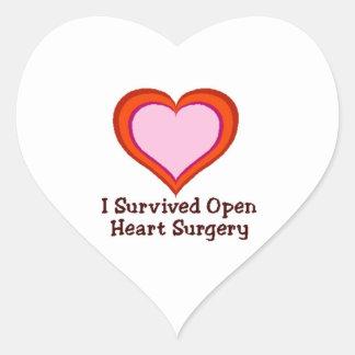 I Survived Open Heart Surgery Heart Sticker