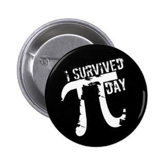 I Survived Pi Day - Funky Pi Symbol - Funny Pi Day Pinback Button