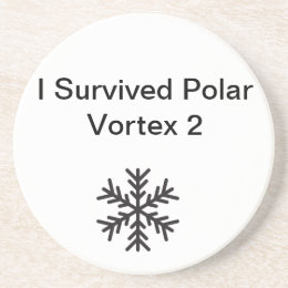 I Survived Polar Vortex 2 Coaster