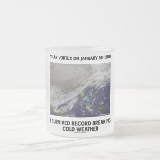 I Survived Record Breaking Cold Weather Mugs