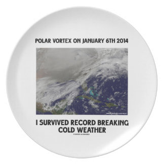 I Survived Record Breaking Cold Weather Plates