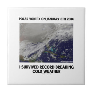 I Survived Record Breaking Cold Weather Small Square Tile