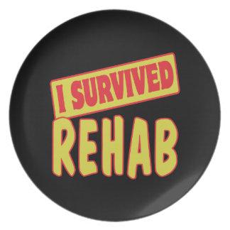 I SURVIVED REHAB DINNER PLATE