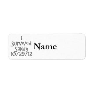 I Survived Sandy 10-129-12 Gray.png Label